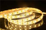 Spannungs-sichere und blaue flexible LED-Streifen-Beleuchtung Gleichstrom-12V