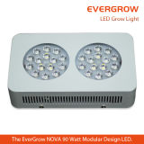 Geavanceerde LED Grow Light voor Distribution