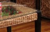 Het moderne Meubilair van de Rotan van de Combinatie van de Reeksen van het Meubilair van de Eetkamer