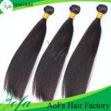 Человеческие волосы хорошего выдвижения волос девственницы Remy цены индийского прямые