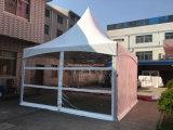 10 x 10ブランドの昇進のための安い価格のおおいのテント