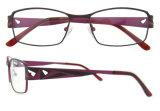 Blocco per grafici ottico degli occhiali dello spettacolo del progettista