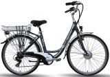 Entraînement maximum de vélo d'E avec le bâti d'alliage d'aluminium