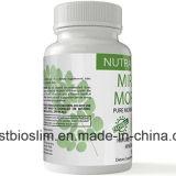 極度の食欲抑制剤の食事療法の丸薬は解毒のMoringaの粉のカプセルを清潔にする