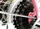 O melhor preço  20inch 8 Speed Bicicleta de dobramento de dobramento da bicicleta