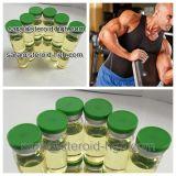 Testosterona líquida Enanthate del frasco de los petróleos Finished para el crecimiento del músculo