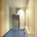 Revestimiento antibacteriano de la pared para el hospital/la escuela/la oficina