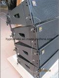 Ds2065 Zeile Reihen-Lautsprecher-bidirektionales PROaudio