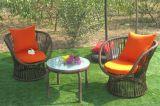 Tabella Furniture-110 esterno del rattan di svago