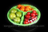 ein Kasten von drei Stücken farbiger Frucht mit einer Wegwerfhaustier-Frucht und einem frischen Fruchtsalat-Kasten