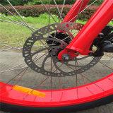 Bici eléctrica del neumático gordo rápido con buena calidad (RSEB-506)