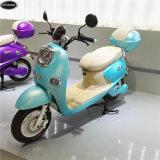 De Elektrische Autopedden /Bikes van de Koning van de schildpad met batterij-Ce van het Lithium