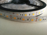 DC12V SMD3528 유연한 LED 지구