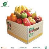 Wellpappen-Frucht-Verpackungs-Kasten