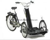 Nuova bici del trasportatore della sedia a rotelle 2017 con il motore 1000W (DT-044)