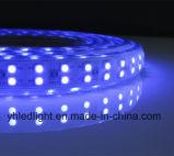 5050 RGB SMD LEDのストリップの高い明るさ120のLEDs
