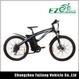 Vélo chaud de Moter d'E-Bicyclette d'homologation de la CE de ventes