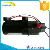 Tipo da válvula do retorno da bomba de água da C.C. da micro alta pressão mínima da bomba de diafragma 12V 30W 80W 3L micro