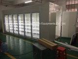 Bequemer Speicher-Weg im Bildschirmanzeige-Kühlraum mit Glastür