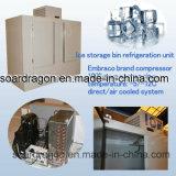 Degelar o escaninho de armazenamento do gelo de 200 sacos para Promotiion (WGL-650)