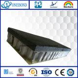 Panneau extérieur noir de nid d'abeilles de pierre de fibre de verre pour le revêtement de mur