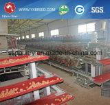 Pollo che pone la gabbia dell'uovo per l'azienda agricola dell'Africa Nigiera (A3L90)
