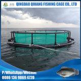 Gaiola de flutuação da piscicultura com serviço do conjunto
