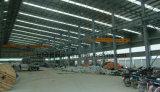 Almacenes de múltiples funciones de la estructura de acero de la venta caliente