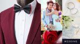 Qualitäts-klassischer Hochzeits-Klage-Blazer für Männer