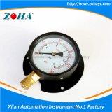 Manómetro geral da resistência de alta temperatura com flange