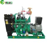판매를 위한 250kVA 천연 가스 발전기
