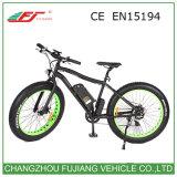 montaña eléctrica adulta Ebike de la bicicleta de 48V 750W