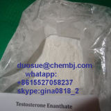 Bodybuilding를 위한 99% 순수성 Steroid Powder Testosterone Enanthate