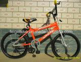 Велосипед детей подростка BMX горячего сбывания Африки дешевый модельный ягнится Bike (FP-KDB-17050)