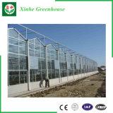Легко соберите тип стеклянный парник Venlo для аграрной