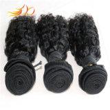 加工されていないモンゴルにバージンの人間の毛髪の編むこと