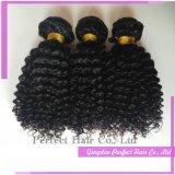 インドのブラジルの異なったタイプのねじれた巻き毛のバージンの毛