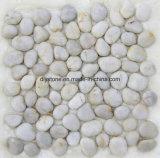 高品質の白い小石のモザイク・タイル