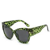 2017 بلاستيكيّة نظّارات شمس جديدة [برند نم] نساء نظّارات شمس (6823)