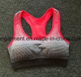 Terno movimentando-se, sutiã do exercício para mulheres/senhora, roupa Running, desgaste da ioga
