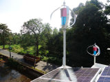 Gerador de vento (turbina de vento Generator200W-10kw)