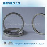 Neodymium permanente NdFeB Magnets Different Size di Big Rings