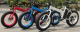 Soem-fetter Gummireifen 20 Inch elektrisches Fahrrad faltend