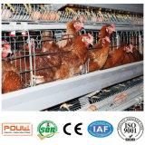 Poultech automático una jaula del pollo de la capa de la batería del marco