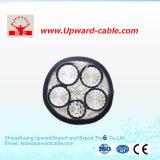 Câble électrique isolé de pouvoir de XLPE /PVC (polyéthylène réticulé)