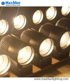 Handelsbeleuchtung verwendet System-Post PFEILER LED im Spur-Licht