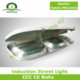 80With120With150W Induction Street Lamp IP68 Waterproof
