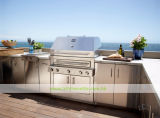 Cozinha ao ar livre do BBQ do aço 304 inoxidável (WH-D402)