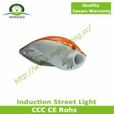 80W~100W Induction Street Light mit Outdoor Fiting CER RoHS Approvel