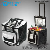 32L Promotional Flexible Picnic Insulated Lunch Bottle Cooler Bag